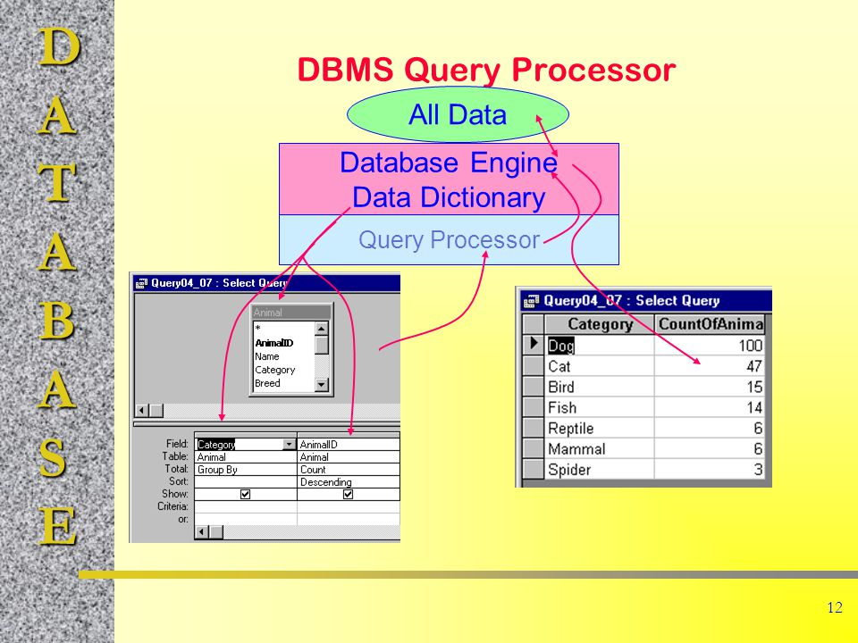 DATABASE 12 DBMS Query Processor All Data Database Engine Data Dictionary Query Processor