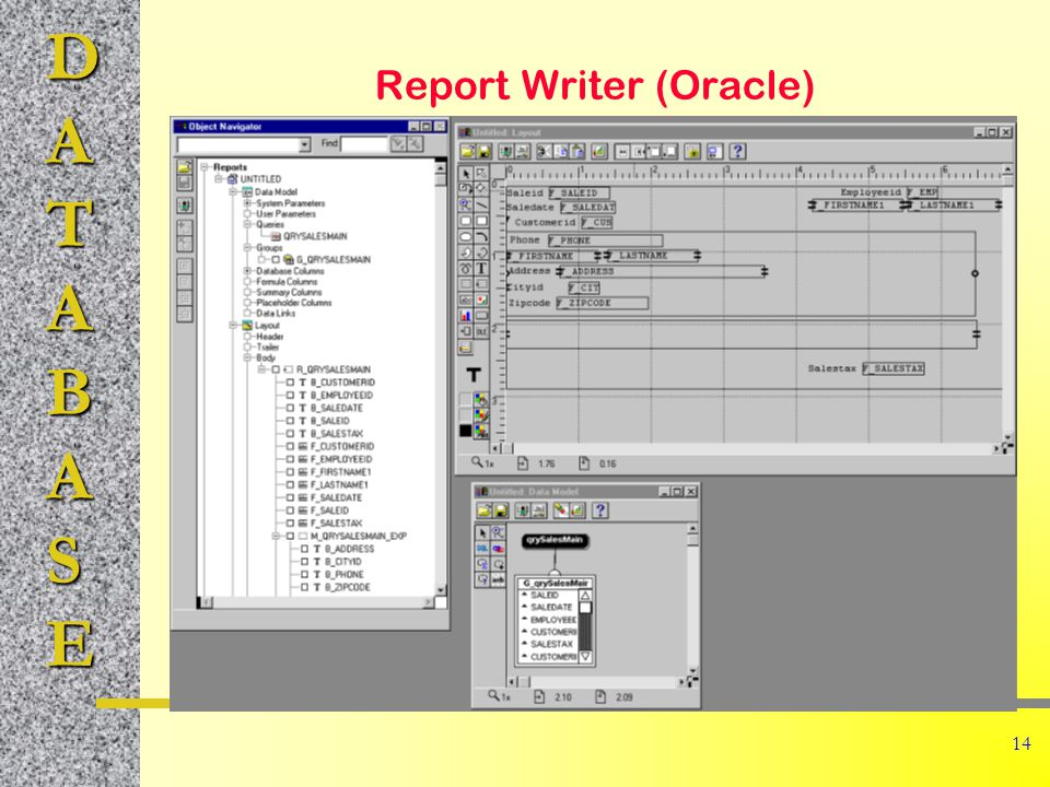 DATABASE 14 Report Writer (Oracle)