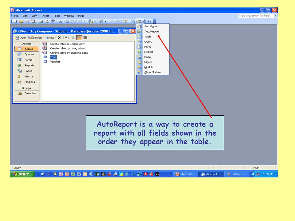 AutoReport is a way to create a report with all fields shown in the order they appear in the table.