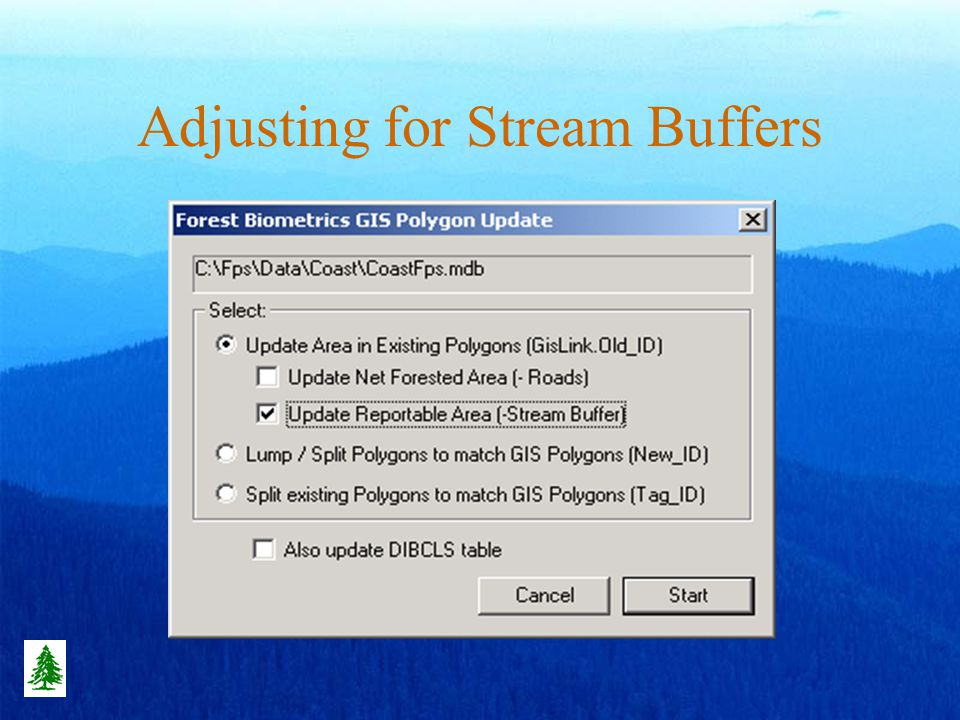 Adjusting for Stream Buffers