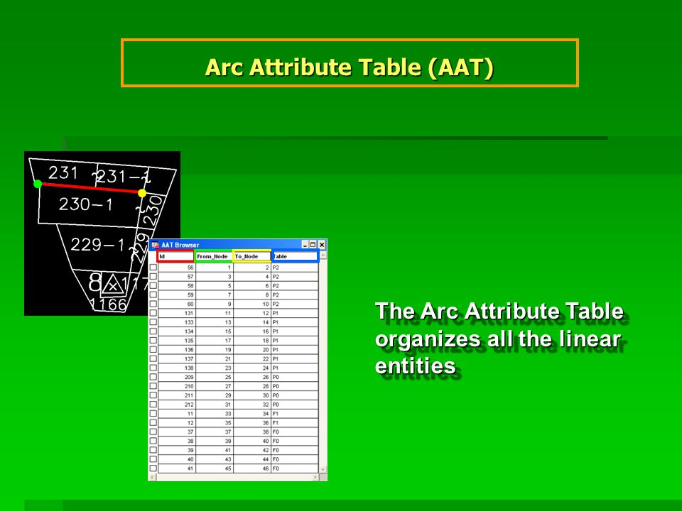 Arc Attribute Table (AAT) The Arc Attribute Table organizes all the linear entities