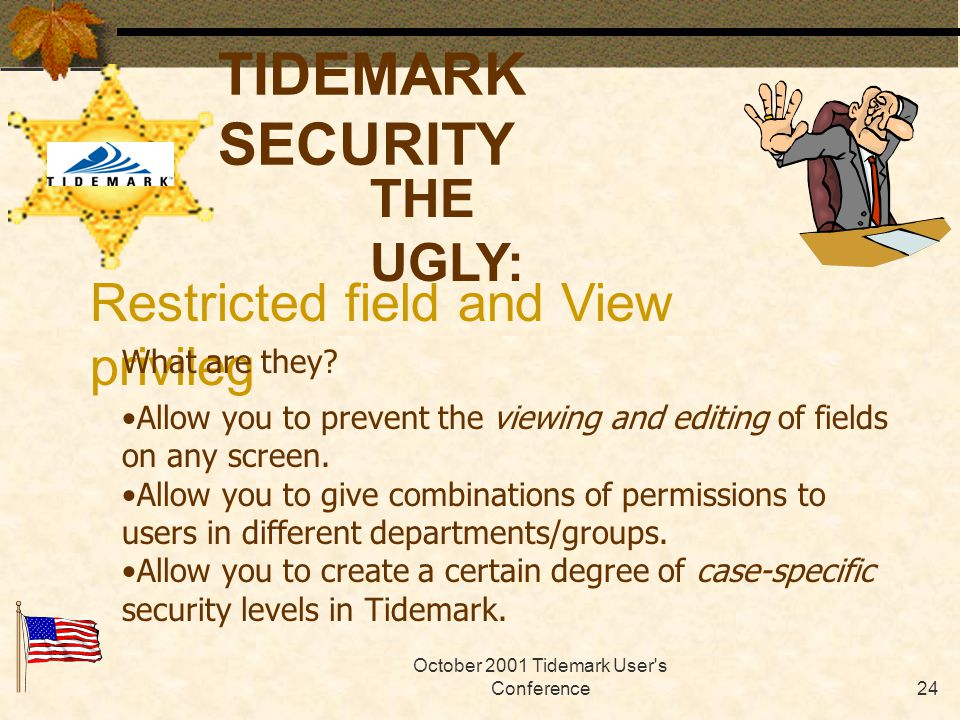 October 2001 Tidemark User s Conference23 TIDEMARK SECURITY THE UGLY: Restricted field and View privilege Tables