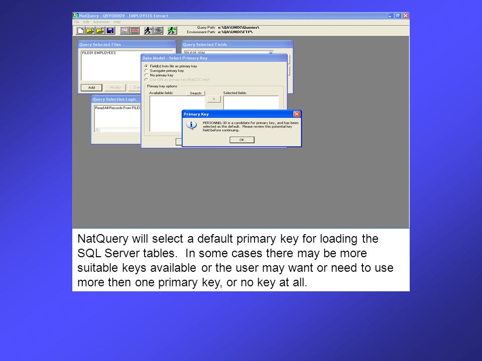 The Data Model – Select Primary Key window allows the user up to four options.