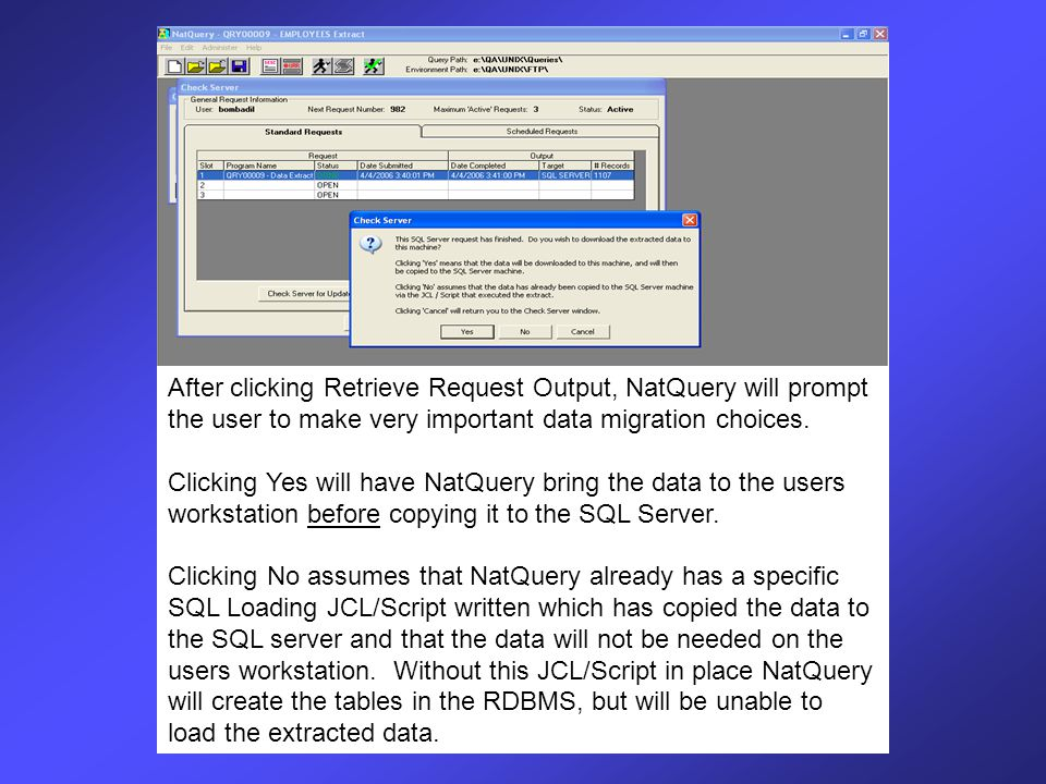Prior to this automatic loading prompt, NatQuery may bring up several screens asking the user for their specific SQL and Network user IDs and passwords, depending on how the integration is to be accomplished.