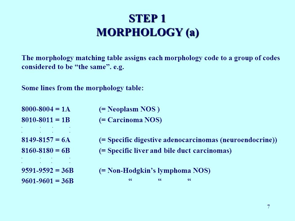 7 STEP 1 MORPHOLOGY (a) The morphology matching table assigns each morphology code to a group of codes considered to be the same.