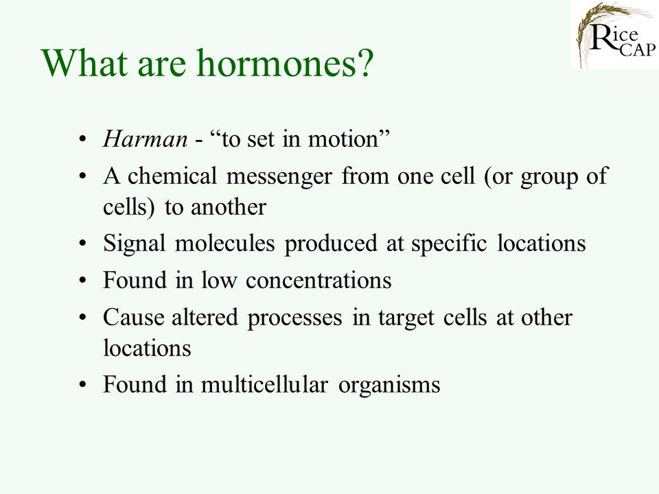 What are hormones? Harman - to set in motion A chemical messenger from one cell (or group of cells) to another Signal molecules produced at specific l