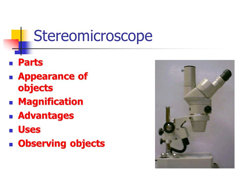 Stereomicroscope Parts Parts Appearance of objects Appearance of objects Magnification Magnification Advantages Advantages Uses Uses Observing objects Observing objects