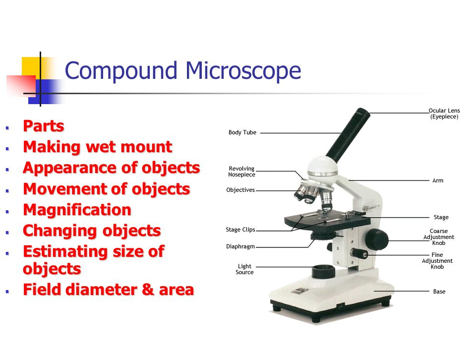 Compound Microscope Parts Parts Making wet mount Making wet mount Appearance of objects Appearance of objects Movement of objects Movement of objects Magnification Magnification Changing objects Changing objects Estimating size of objects Estimating size of objects Field diameter & area Field diameter & area