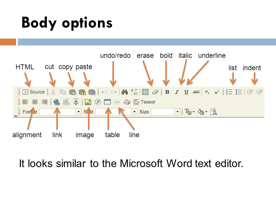 Body options HTML cutpastecopy undo/redoerasebolditalicunderline listindent alignmentlinkimagetableline It looks similar to the Microsoft Word text editor.