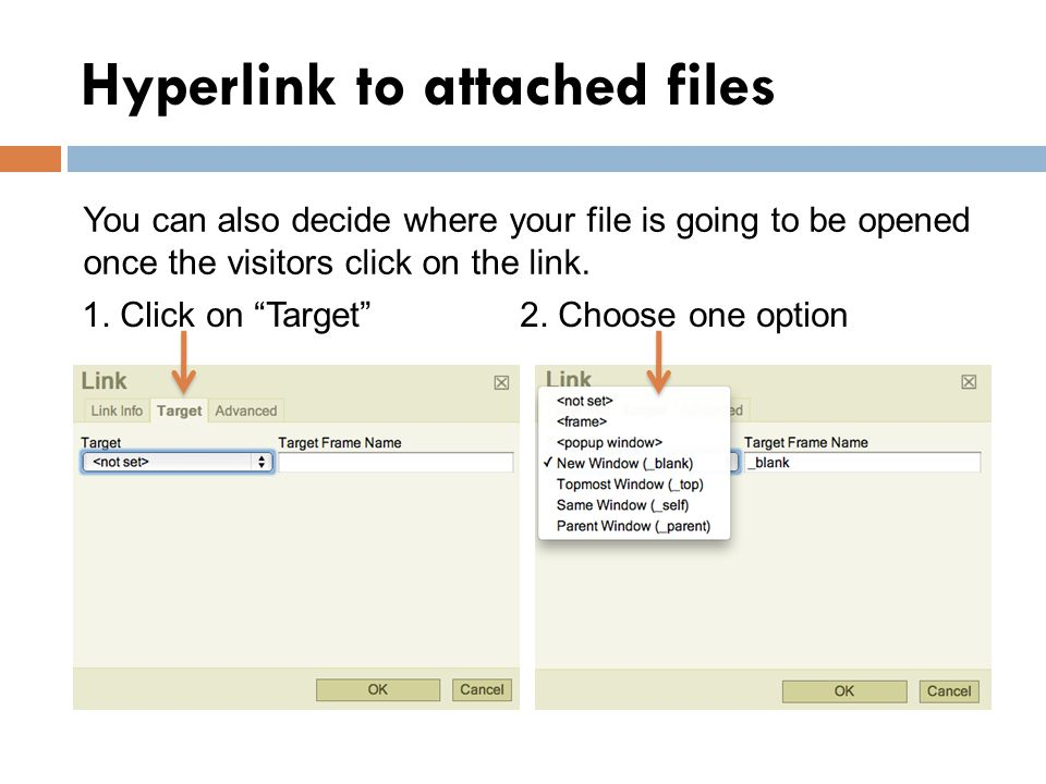 Hyperlink to attached files You can also decide where your file is going to be opened once the visitors click on the link.