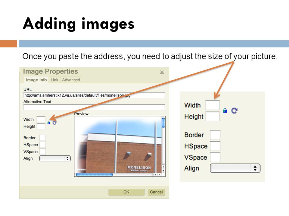 Adding images Once you paste the address, you need to adjust the size of your picture.