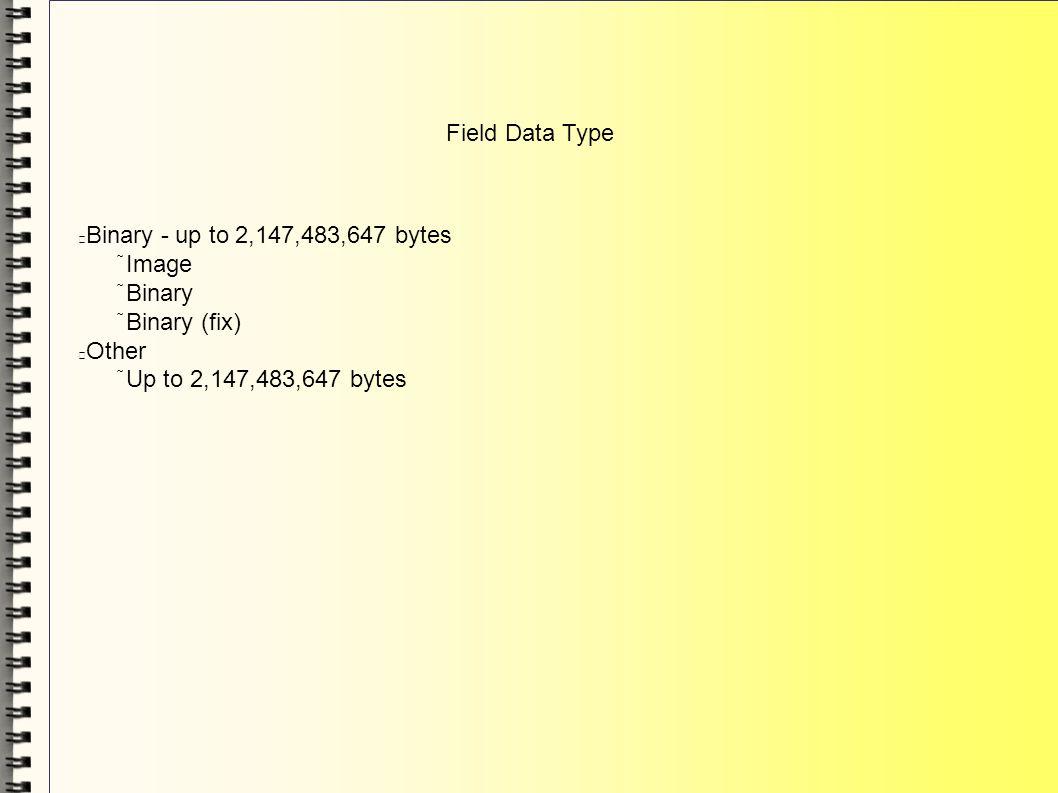 Field Data Type Binary - up to 2,147,483,647 bytes Image Binary Binary (fix) Other Up to 2,147,483,647 bytes