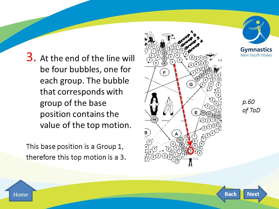 3. At the end of the line will be four bubbles, one for each group.