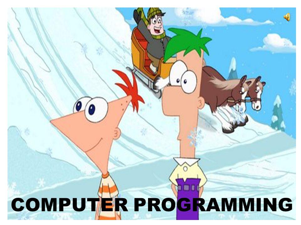 COMPUTER PROGRAMMING