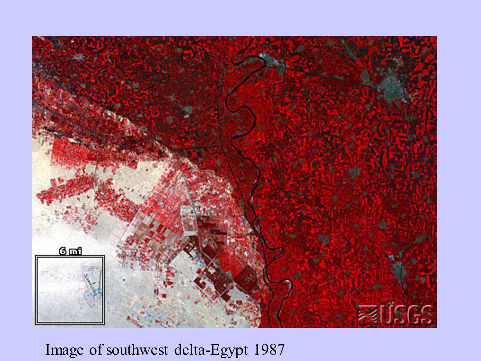 Image of southwest delta-Egypt 1987