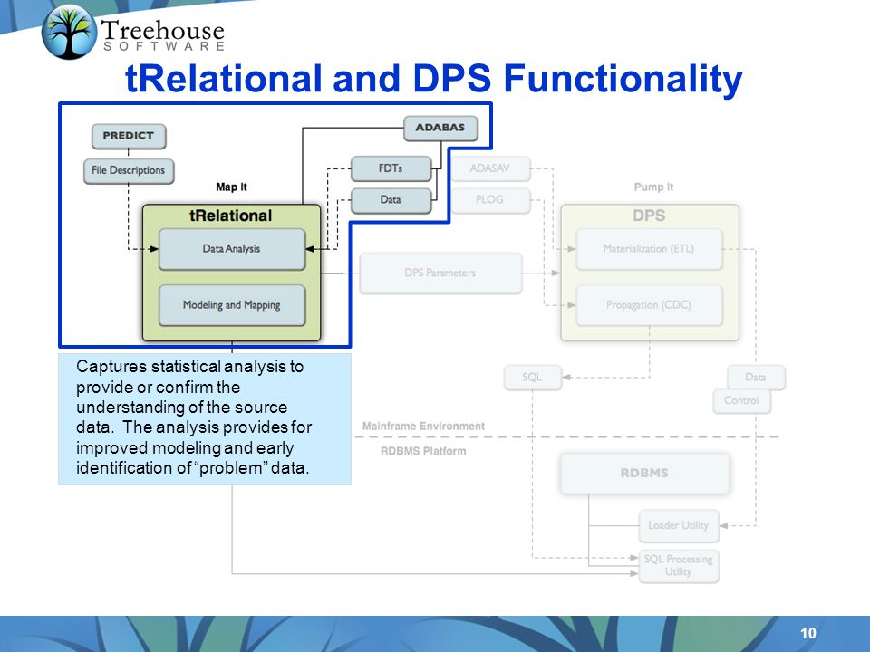 10 tRelational and DPS Functionality Captures statistical analysis to provide or confirm the understanding of the source data. The analysis provides f