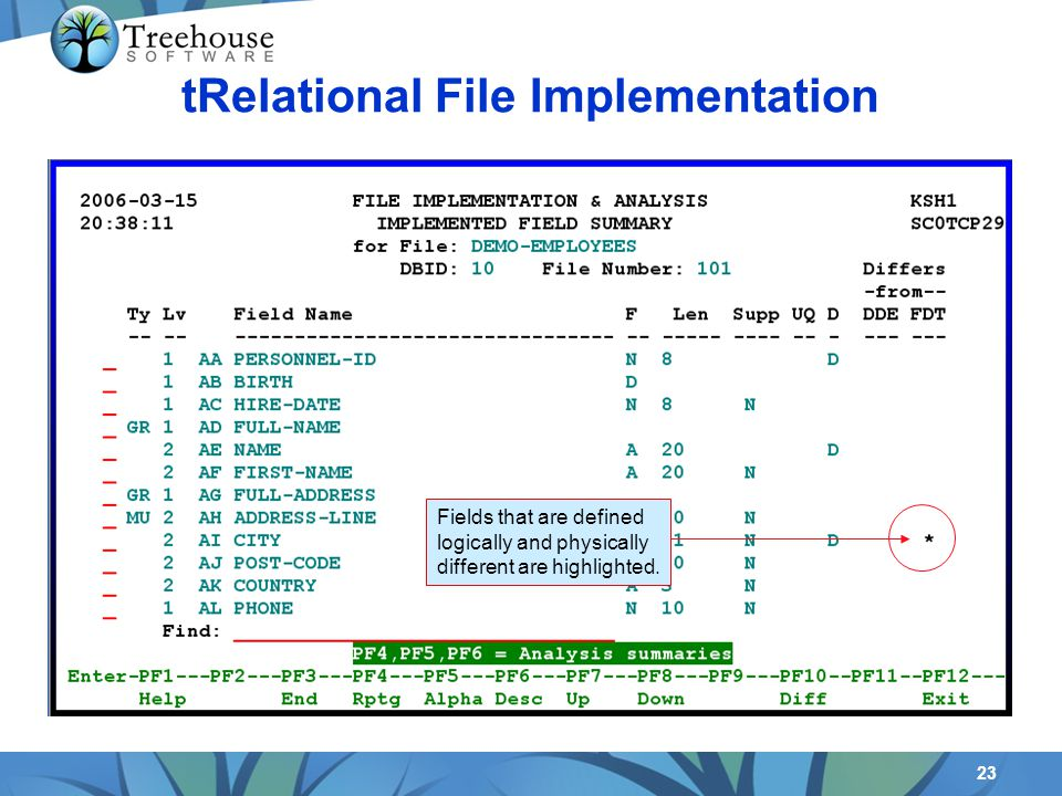 23 tRelational File Implementation Fields that are defined logically and physically different are highlighted.