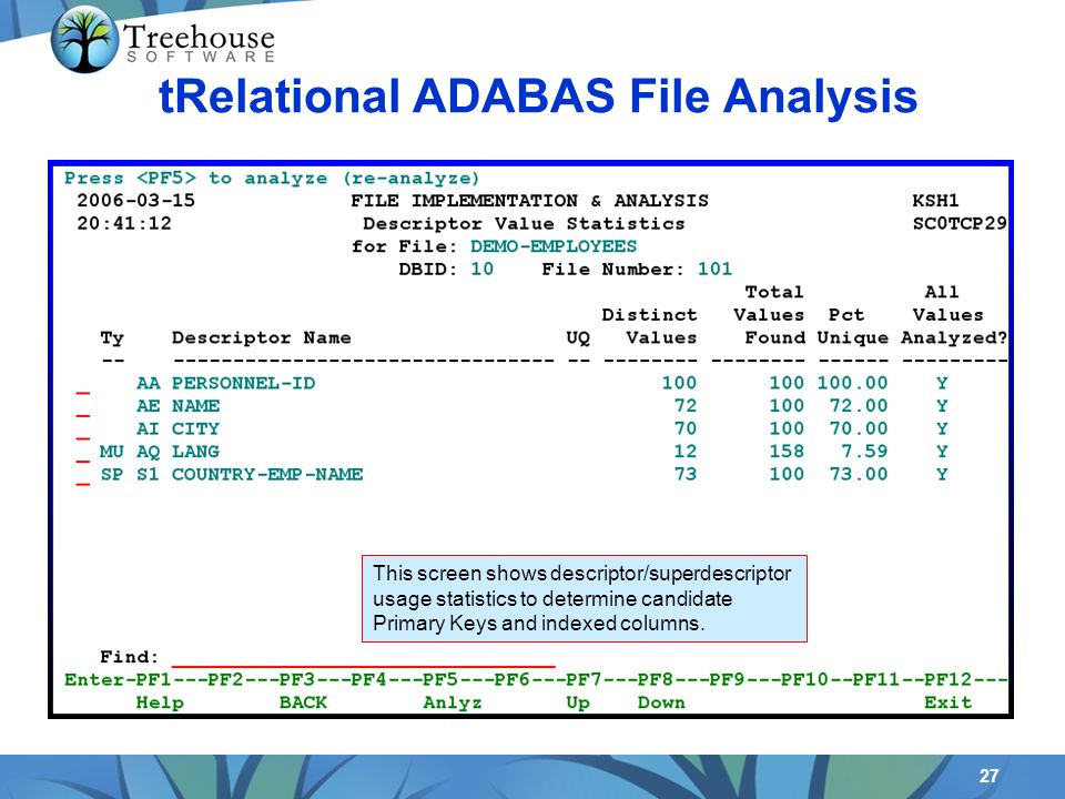 27 tRelational ADABAS File Analysis This screen shows descriptor/superdescriptor usage statistics to determine candidate Primary Keys and indexed columns.