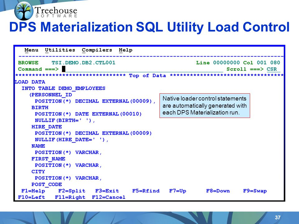 37 Native loader control statements are automatically generated with each DPS Materialization run. DPS Materialization SQL Utility Load Control