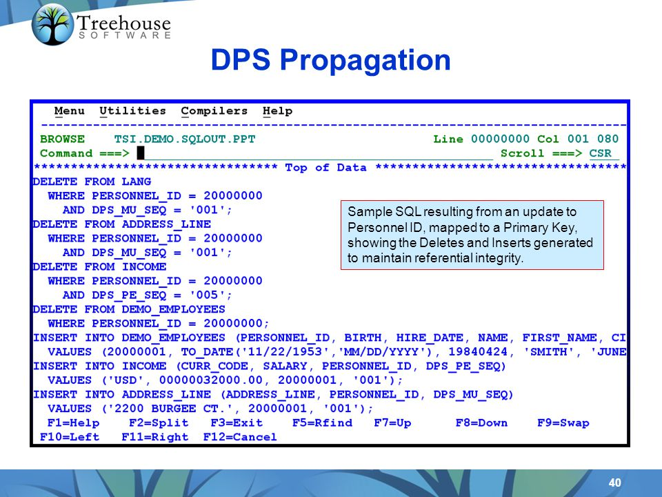 40 DPS Propagation Sample SQL resulting from an update to Personnel ID, mapped to a Primary Key, showing the Deletes and Inserts generated to maintain