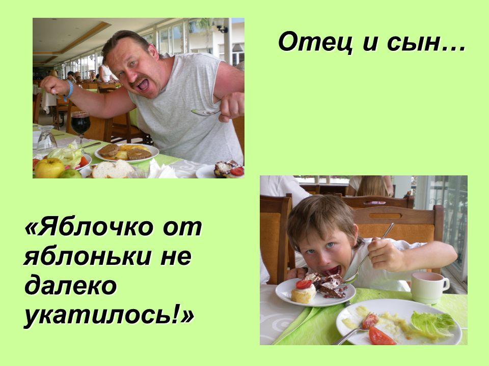 «Яблочко от яблоньки не далеко укатилось!» Отец и сын…