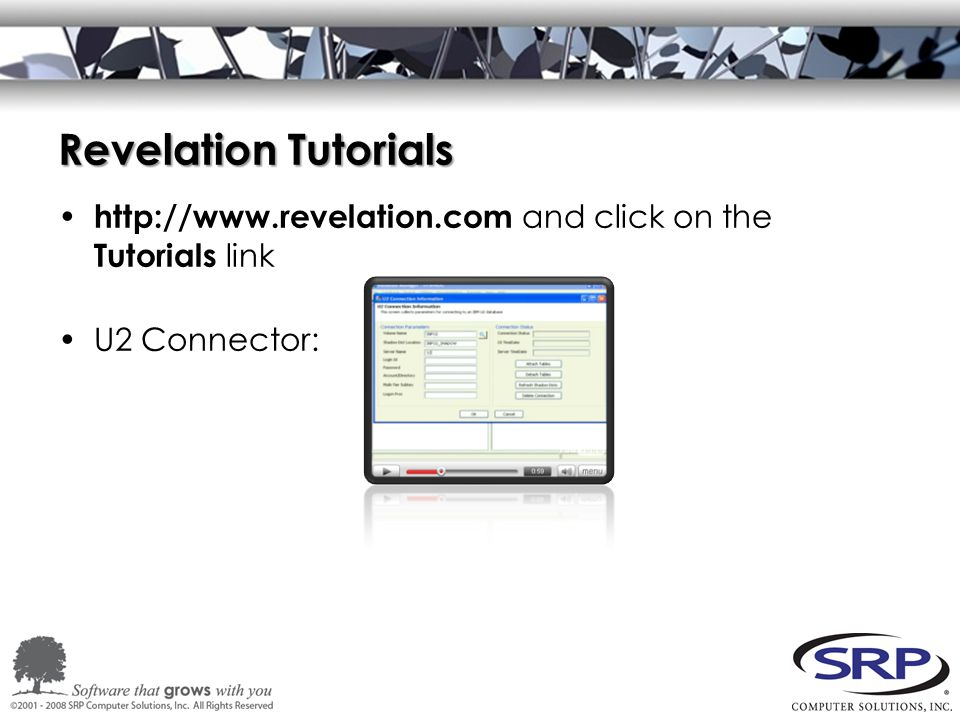 Revelation Tutorials http://www.revelation.com and click on the Tutorials link U2 Connector: