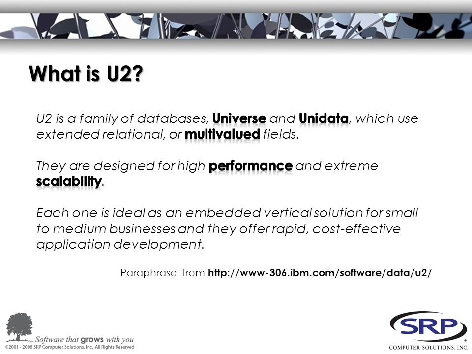 What is U2 Paraphrase from http://www-306.ibm.com/software/data/u2/