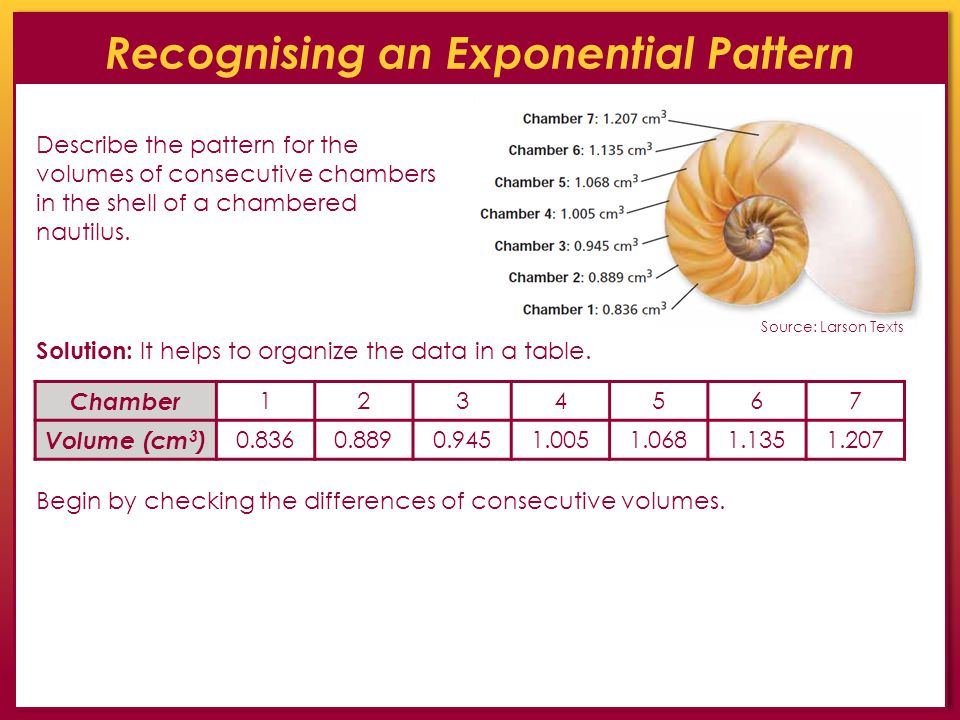 Recognising an Exponential Pattern Describe the pattern for the volumes of consecutive chambers in the shell of a chambered nautilus. Solution: It hel