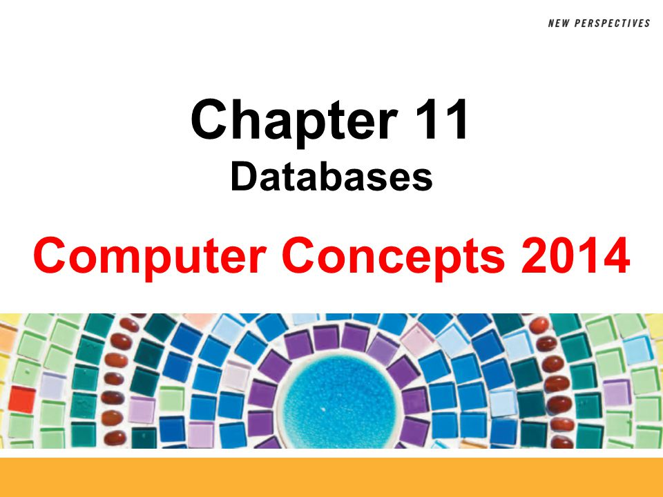11 Defining Fields The term database structure refers to the arrangement of fields, tables, and relationships in a database Break data into fields just by using common sense and considering how people might want to access the data Use a primary key field to make each record unique Use appropriate data types for each field Chapter 11: Databases42