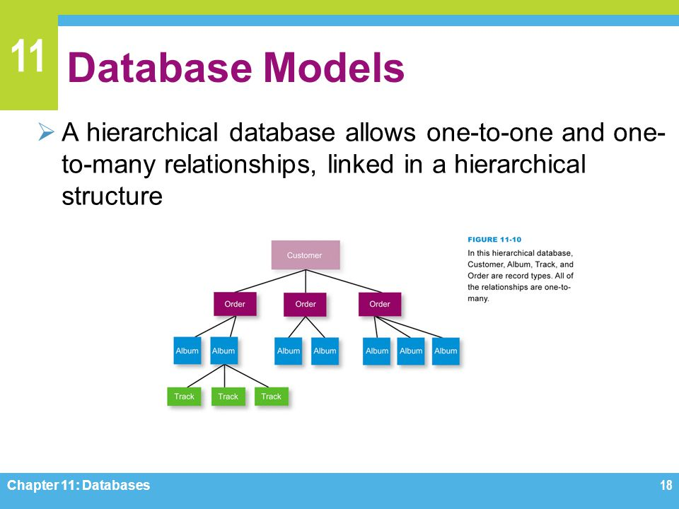 11 Database Models A hierarchical database allows one-to-one and one- to-many relationships, linked in a hierarchical structure Chapter 11: Databases1