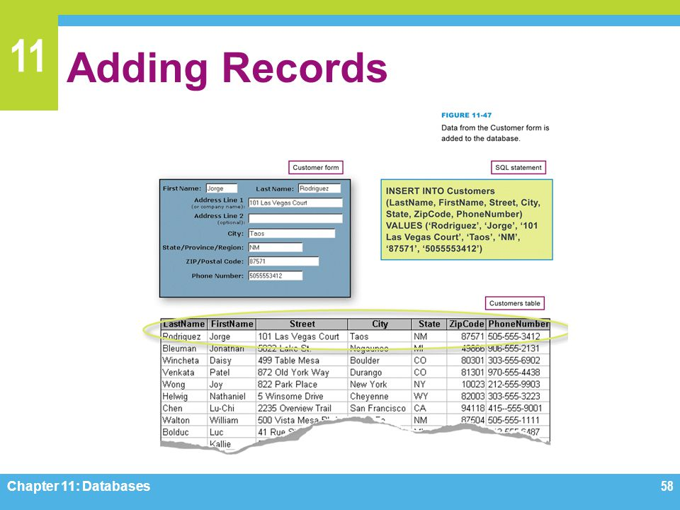 11 Adding Records Chapter 11: Databases58
