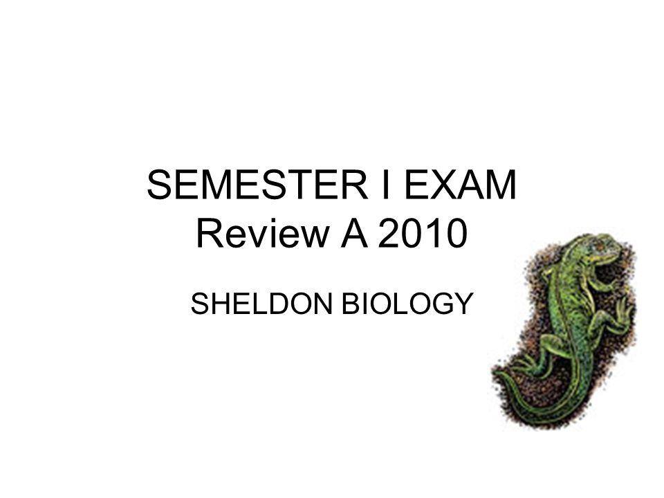 SEMESTER I EXAM Review A 2010 SHELDON BIOLOGY