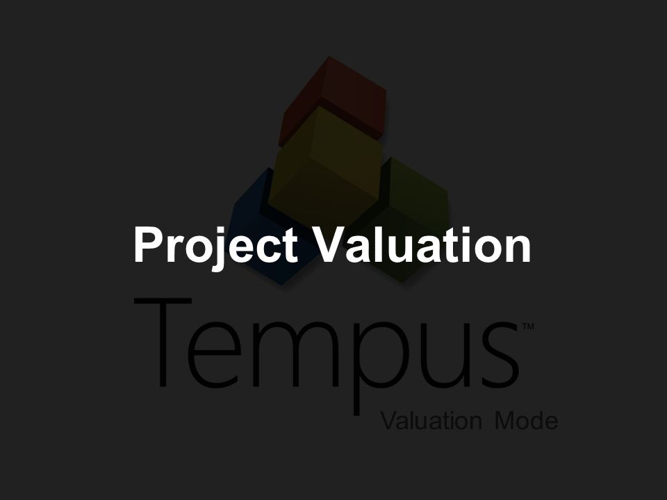 Project Valuation