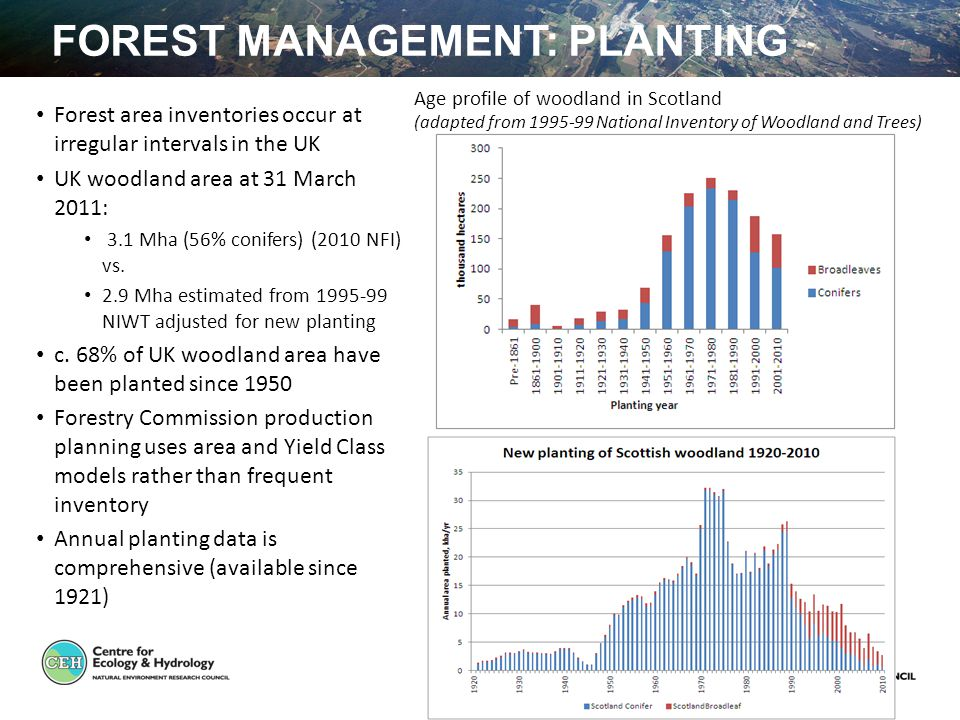 FOREST MANAGEMENT: PLANTING Forest area inventories occur at irregular intervals in the UK UK woodland area at 31 March 2011: 3.1 Mha (56% conifers) (2010 NFI) vs.