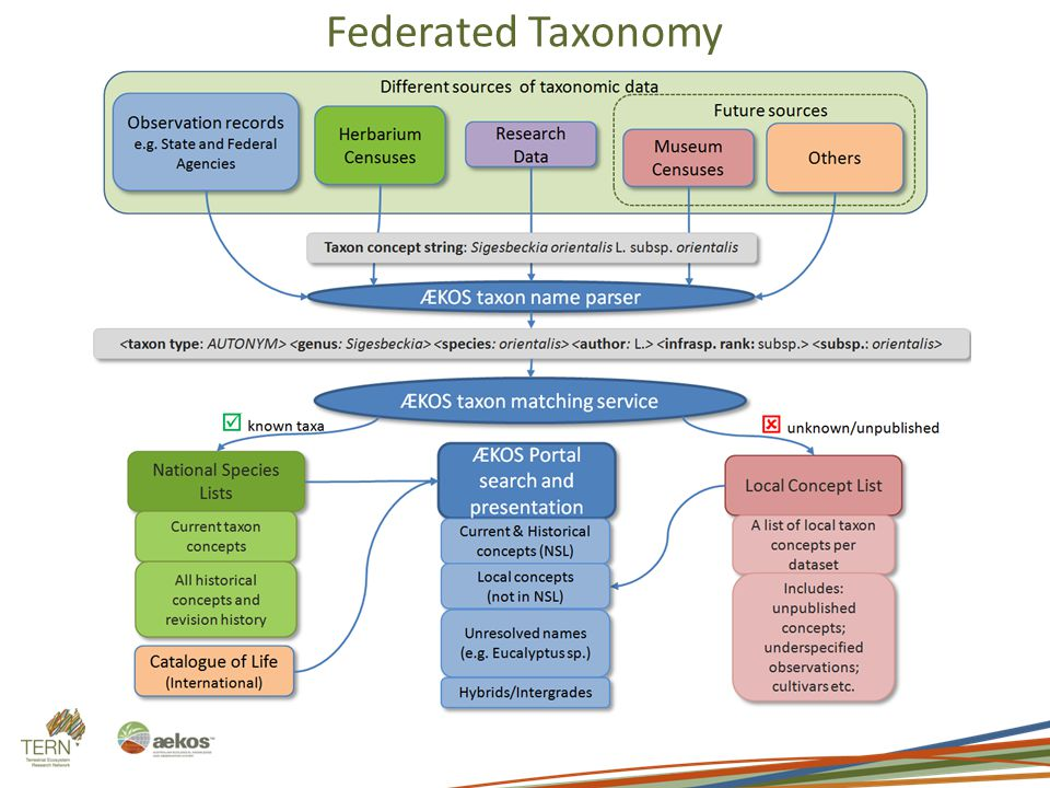 Federated Taxonomy