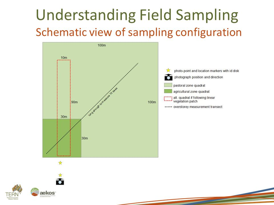 Understanding Field Sampling Schematic view of sampling configuration