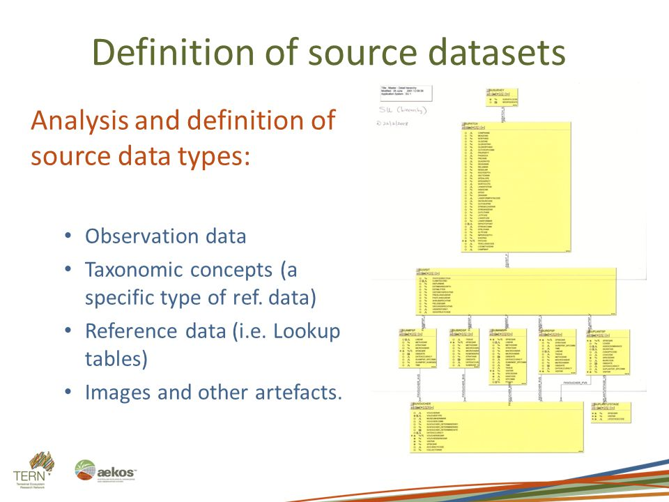 Definition of source datasets Analysis and definition of source data types: Observation data Taxonomic concepts (a specific type of ref. data) Referen