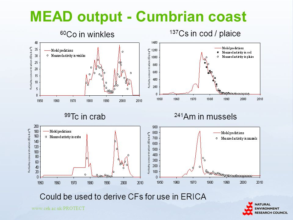 www.ceh.ac.uk/PROTECT 60 Co in winkles 137 Cs in cod / plaice 99 Tc in crab 241 Am in mussels Could be used to derive CFs for use in ERICA MEAD output - Cumbrian coast