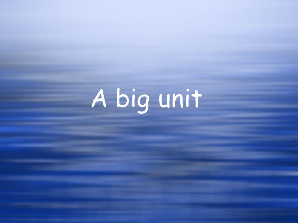 A big unit