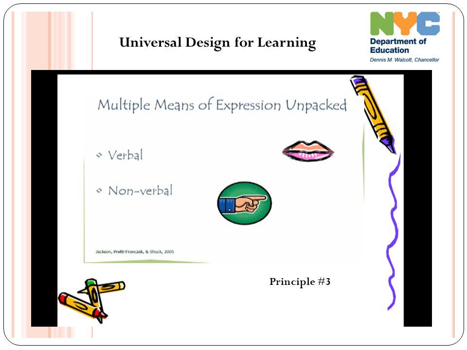 Universal Design for Learning Principle #3