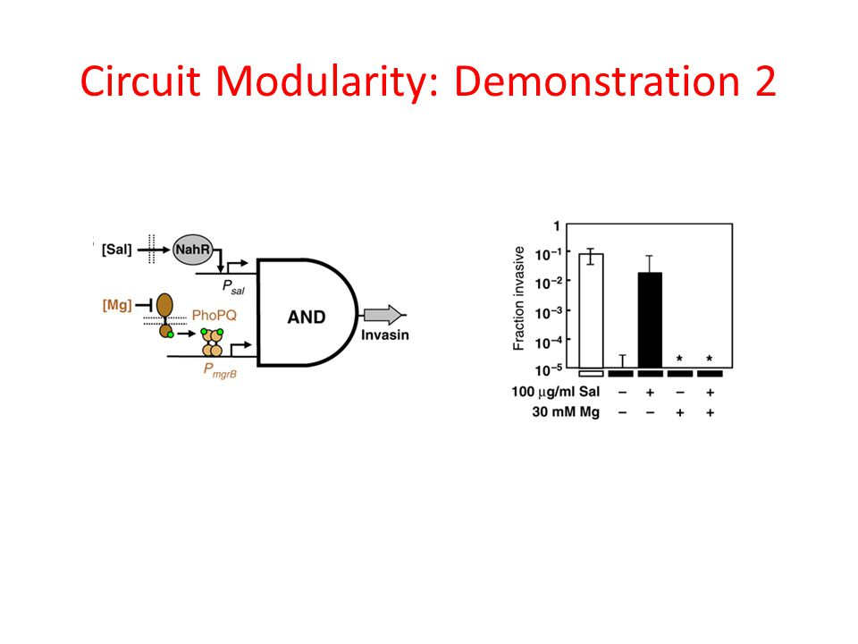 Circuit Modularity: Demonstration 2