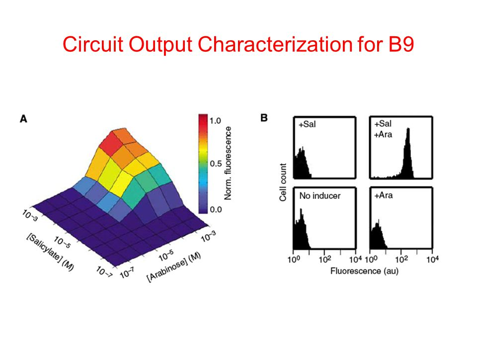 Circuit Output Characterization for B9