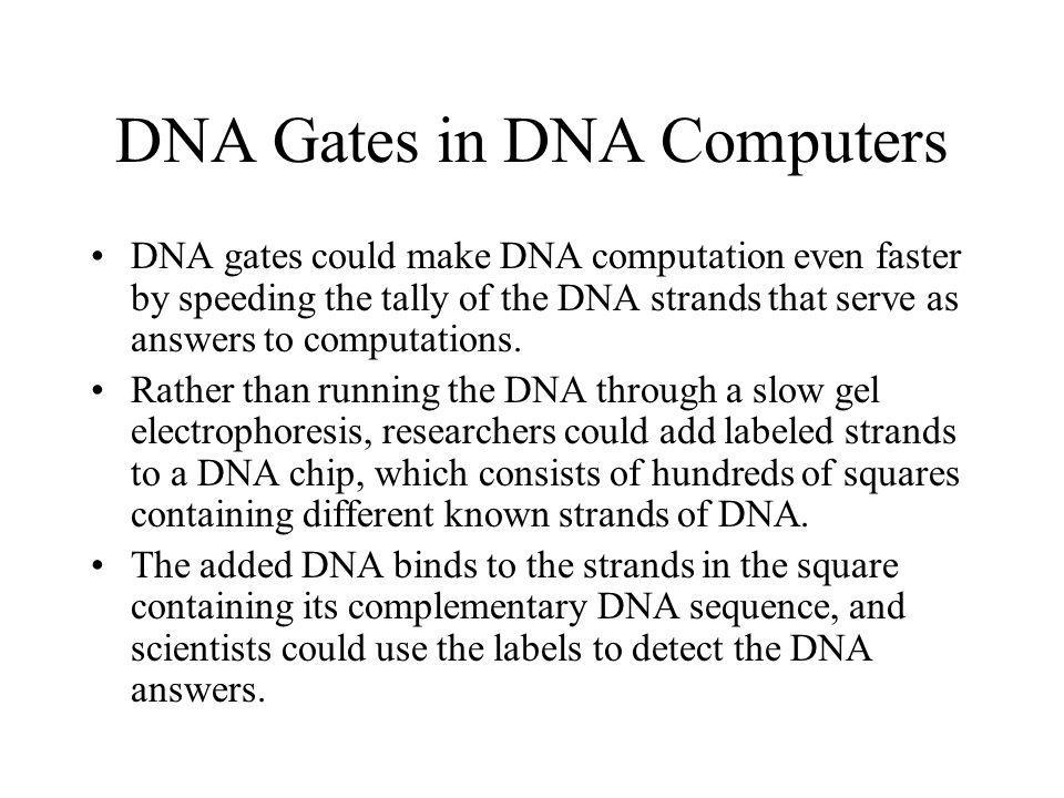 DNA Gates in DNA Computers DNA gates could make DNA computation even faster by speeding the tally of the DNA strands that serve as answers to computat