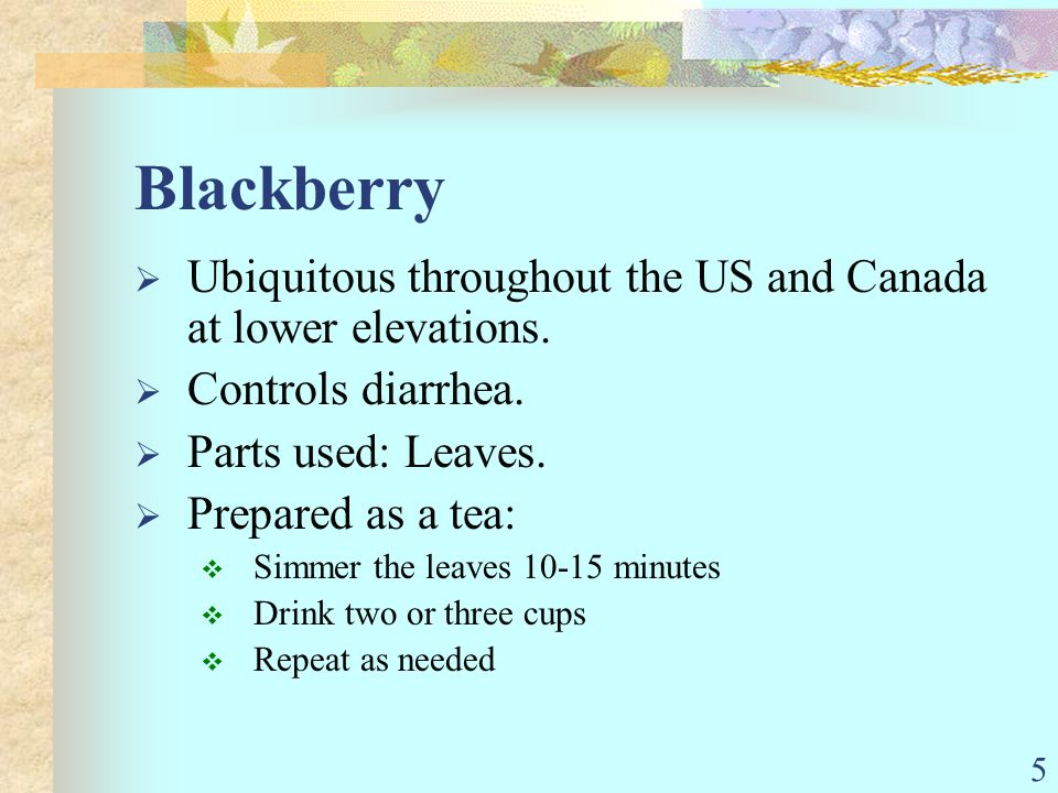 5 Ubiquitous throughout the US and Canada at lower elevations. Controls diarrhea. Parts used: Leaves. Prepared as a tea: Simmer the leaves 10-15 minut