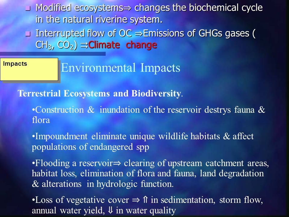 Impacts Modified ecosystems changes the biochemical cycle in the natural riverine system.