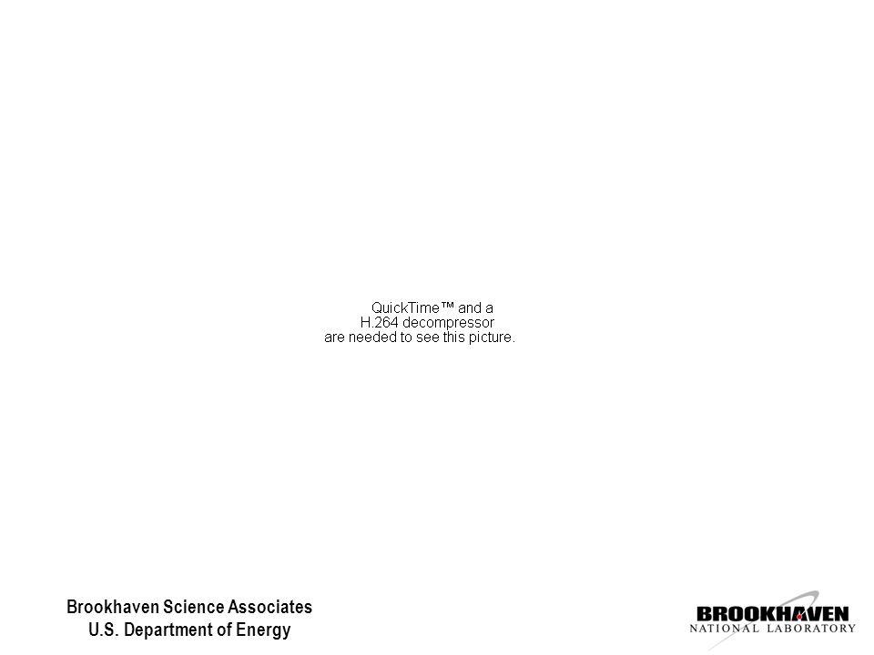 United States of Obesity Time.com June 7, 2004 Brookhaven Science Associates U.S.
