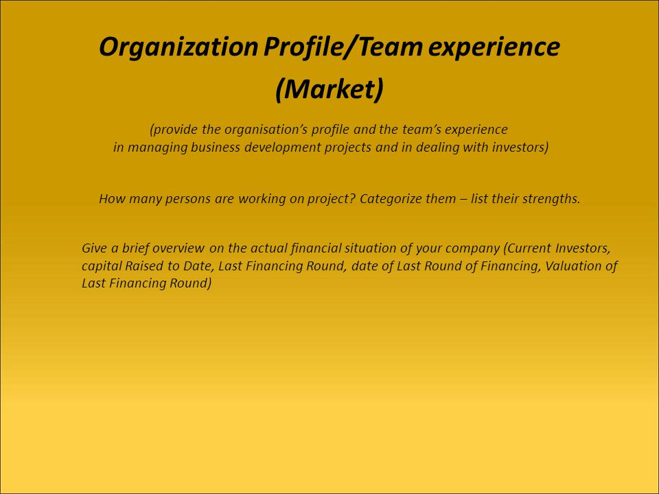 Organization Profile/Team experience (Market) (provide the organisations profile and the teams experience in managing business development projects and in dealing with investors) How many persons are working on project.