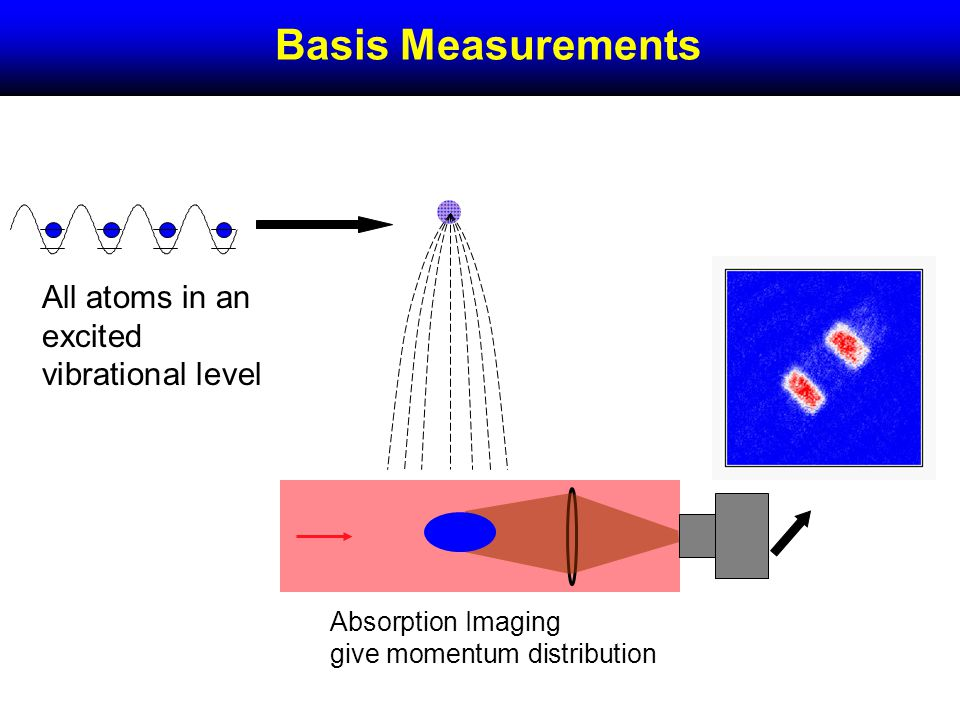 Basis Measurements Absorption Imaging give momentum distribution All atoms in an excited vibrational level