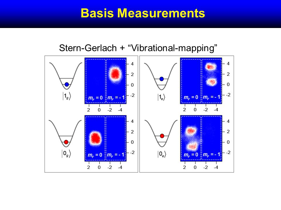 Basis Measurements Stern-Gerlach + Vibrational-mapping