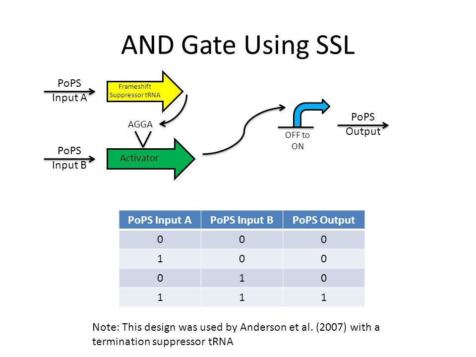 AND Gate Using SSL PoPS Input APoPS Input BPoPS Output 000 100 010 111 Frameshift Suppressor tRNA PoPS Input A PoPS Input B Activator AGGA PoPS Output